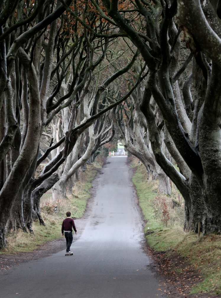 02_day_02-the-dark-hedges